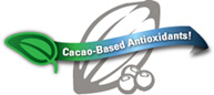 High Antioxidant Cacao Healthy Chocolate